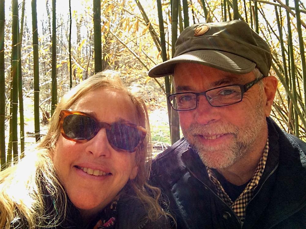 Peter and Diana Stonecrop Bamboo