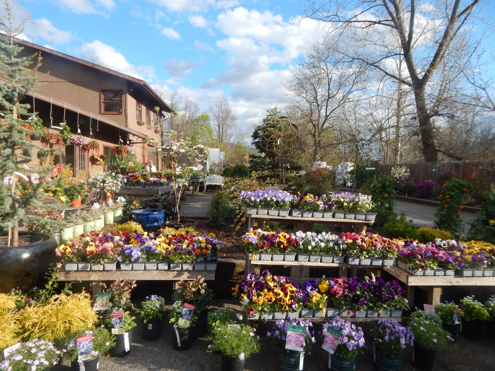 Willow Ridge Nursery & Garden Center  An Abundance destined for your garden