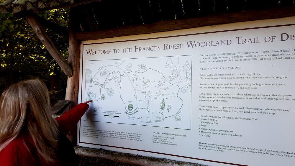 Boscobel Woodland Beautiful Map and Story