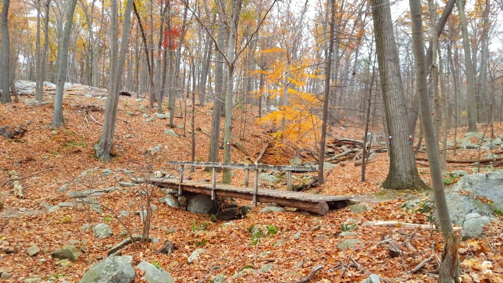 Manitoga Paths bridge over a stream