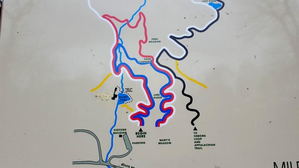 Manitoga Three Paths