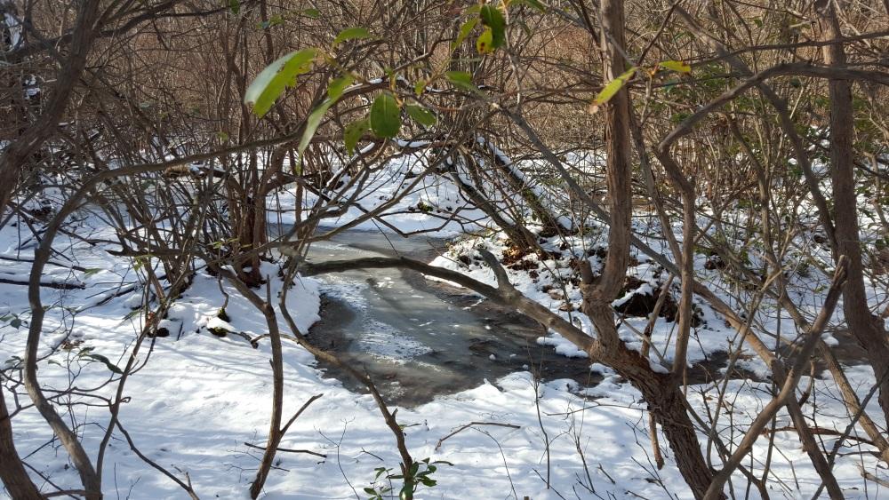 Charcoal Burner Stream