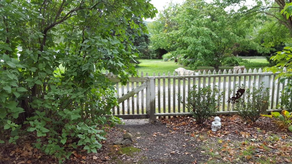 33-garrison-landing-fall-coming-back-fence