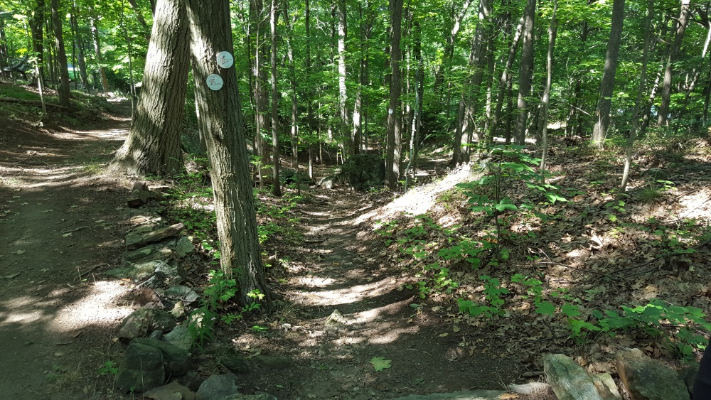 Garrison Prayer Trail SPlits down and to Garrison Institute