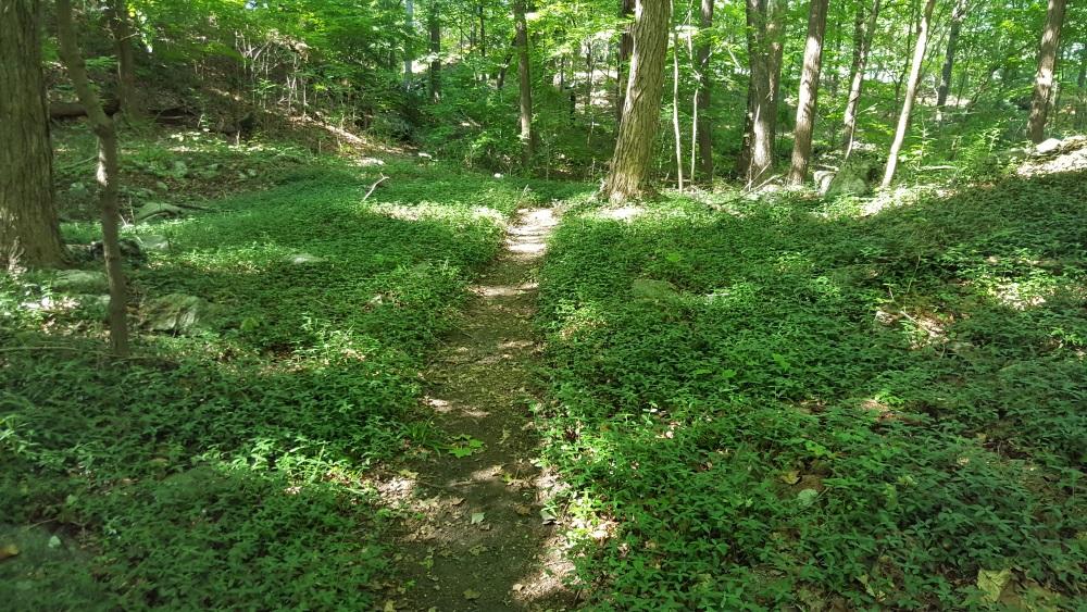 Garrison Prayer Trail Starts Heading A Pretty Trail